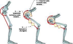 postura della sedia-3