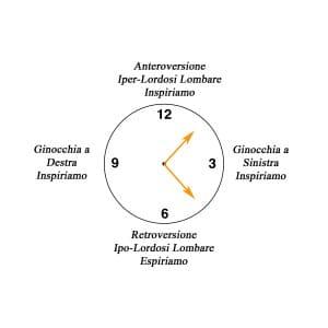 clock decubito supino
