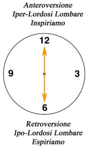 clock lombare Fitball 12-6