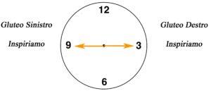clock lombare su fitball 3-9