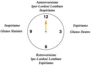 clock circonferenza lombare su Fitball