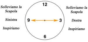 clock la croce dorsale su fitball 3-9