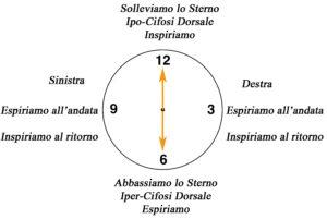 clock semicirconferenza Dorsale su fitball