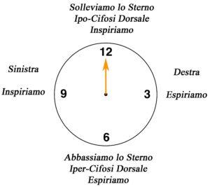 clock La circonferenza Dorsale su fitball