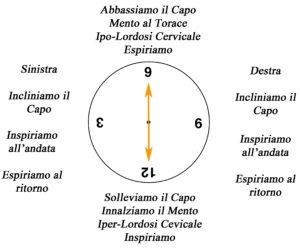 clock La semicirconferenza cervicale su fitball